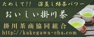 掛川茶商共同組合.jpg